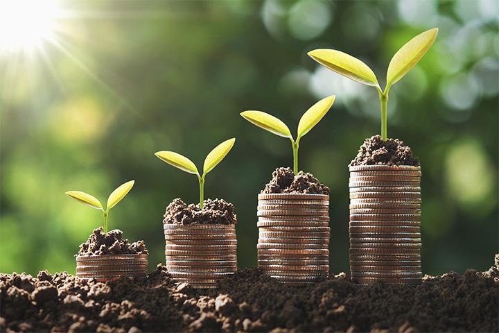 Investment_Growing money_Interview Samuel S. Weber